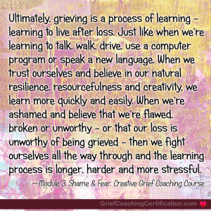 Learning process of grief